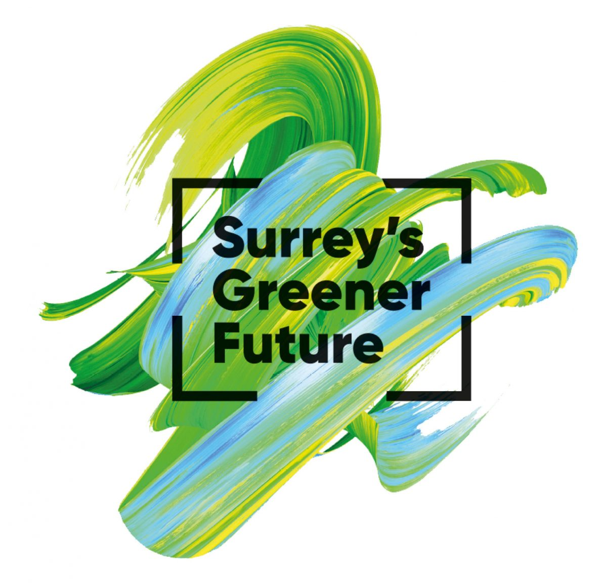 Surrey's Greener Future – Workshop 2